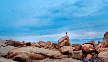[Bình Định] Những điểm du lịch nổi tiếng tại đất võ Bình Định