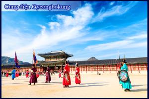 Vì sao nên đi du lịch Hàn Quốc vào mùa hè?